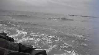 MARK KNOPFLER & EMMYLOU HARRIS, BeachComb, Black Sea