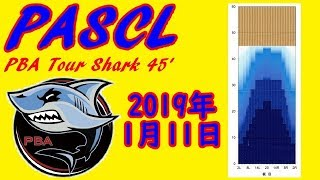 PASCL PBA Animal Pattern Shark【ボウリング】2019/01/11