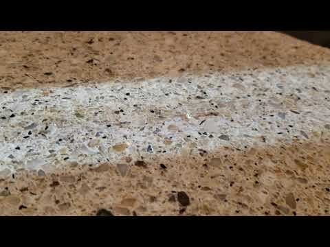 Odorous House Ants Smelling Up the Kitchen in Hightstown, NJ
