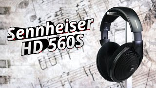 "neutral, offen, bezahlbar... ""spitz(e)""   Sennheiser HD 560S"
