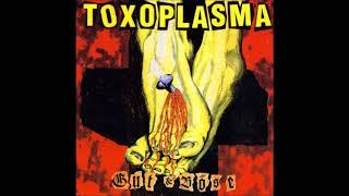Toxoplasma - Gut & Böse