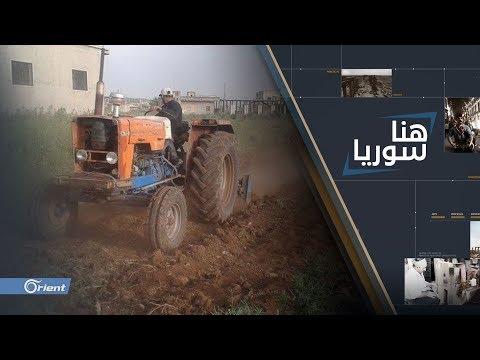 العرب اليوم - شاهد: علاقة الحكومة السورية بتراجع المحصول الزراعي