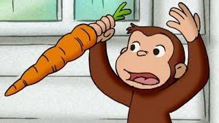 George O Curioso 🐵A Cenoura Perfeita 🐵Compilação 🐵O Macaco🐵Desenhos Animados