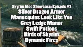 Skyrim Mod Showcase: #7 - Silver Dragon Armor, MLLY, Grey Lodge, SwiftPotion, Birds, Dynamic Fire