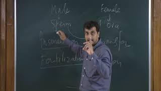 Human Reproduction 1