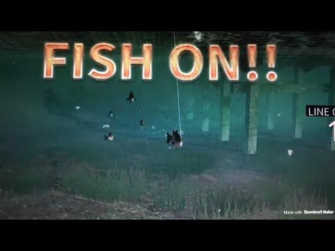 Legendary Fishing PS4 Gameplay!!