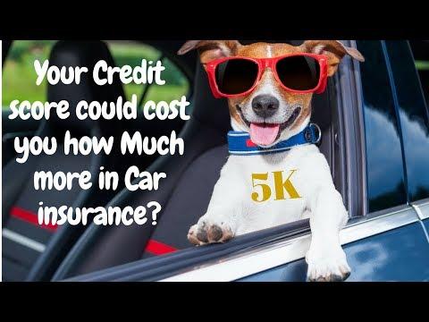 mp4 Car Insurance Quotes Hurt Credit Score, download Car Insurance Quotes Hurt Credit Score video klip Car Insurance Quotes Hurt Credit Score