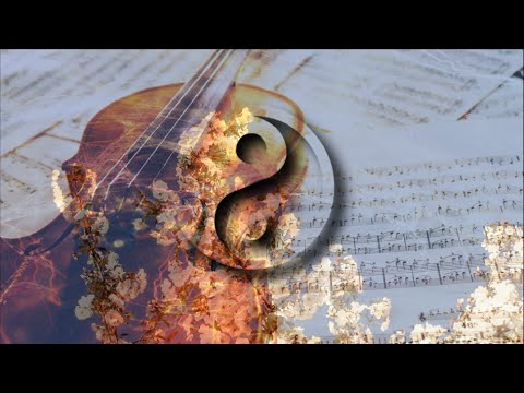 ☯ Zen Violin ☯ 3 HOURS Meditation Music for Yoga, deep sleep, Reiki, Relaxing, Study Background #01