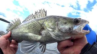 Рыбалка на вилейском водохранилище с берега