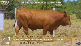 Coro 2289 b4 fiv