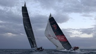 Cabbage Tree Island Race