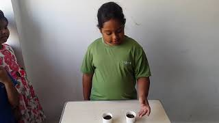 <b>EVS activity videos for IGCSE GRADE 2: Understanding difference between sand and soil</b>