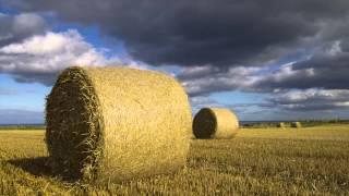 Yorkshire Hay Bales