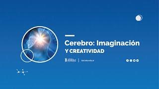 Cerebro: Imaginación y Creatividad