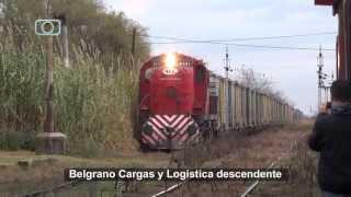 preview picture of video 'Tren de Belgrano Cargas y Logística (ex ALL) pasando por Vedia'