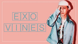 EXO vines to watch on your way to Jurazil Park