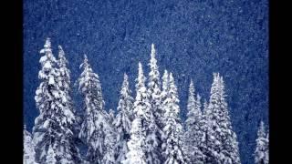 ACCEPT ► Winter Dreams.