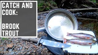 Catch and Cook : Brook Trout fishing in Acadia