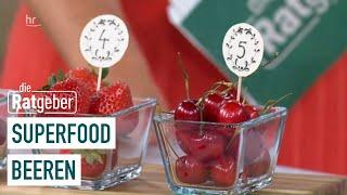 Was können die kleinen Früchtchen? - Superfood Beeren | Ratgeber
