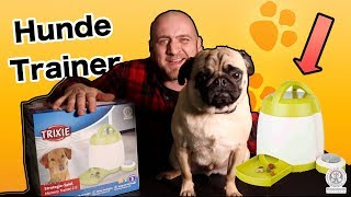 "✅Trixie Dog Activity Memory Trainer 2 0 ""Hunde TRAINIEREN"""