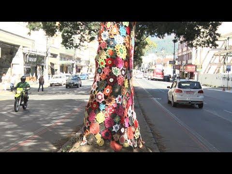 """Em Teresópolis, árvores ganham """"roupas"""" de crochê"""