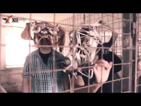 Janko Kulich & Kolegium - Janko Kulich & Kolegium: Vŕ haf haf  OFFICIAL VIDEO 2014