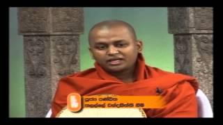 Haththigamaka Ugga Sutta | Ven Talalle Chandakitti Thero