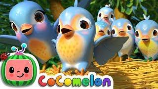 Five Little Birds 3 | CoCoMelon Nursery Rhymes & Kids Songs