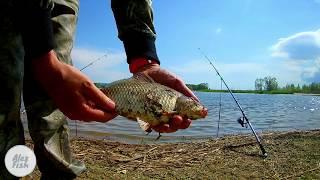 Рыбалка на муравьином острове в тольятти
