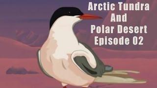 Arctic Tundra And Polar Desert Episode 02