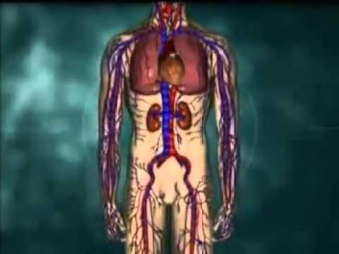 เส้นเลือดพองในขาไม่ได้เส้นเลือดขอด