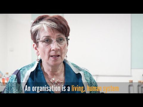 What is Positive Organisational Psychology? - Sarah Lewis