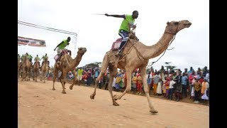 How the Samburu Carmel Derby is impacting tourism in the county | BUSINESS TODAY