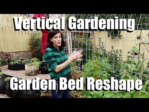 Vertical Gardening - Garden Bed Reshape - Planting Runner Beans & Peas on a Cattle Panel Trellis