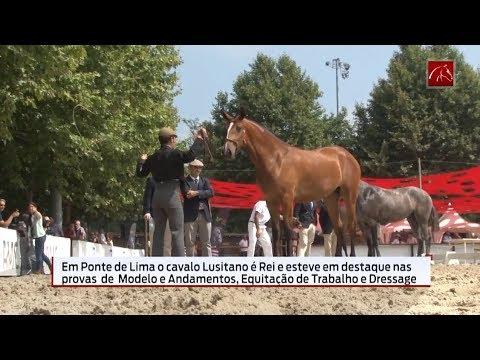 Programa da Equitação TV, sobre a 11.ª edição da Feira do Cavalo de Ponte de Lima
