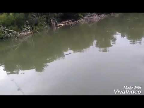 Pescaria de Tucunaré em Anchieta-ES