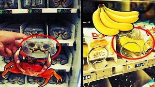 Top 7 Weirdest Vending Machines In The World
