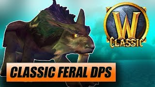 world of warcraft classic feral druid - TH-Clip