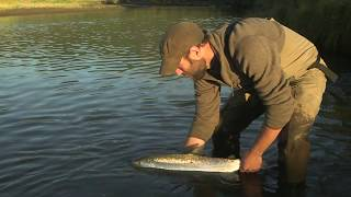 Alaska Fly Fishing Tips with John Horsey