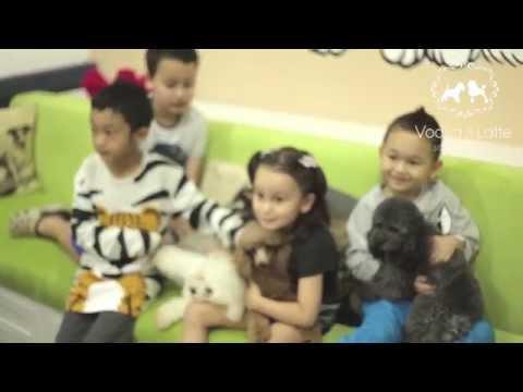 youtube:OvZ-bKzPmPw
