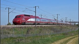 High Speed Trains TGV   Thalys   Eurostar