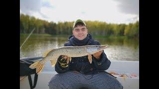 Рыбалка на озере вышихры владимирская область