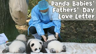 "Panda Babies' Most ""Sincere"" Fathers' Day Love Letter to Nannies 