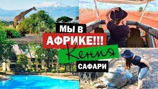 МЫ В АФРИКЕ !!! | КЕНИЯ | САФАРИ | Национальные парки Цаво, Амбусели, Симба Хиллс, Момбаса
