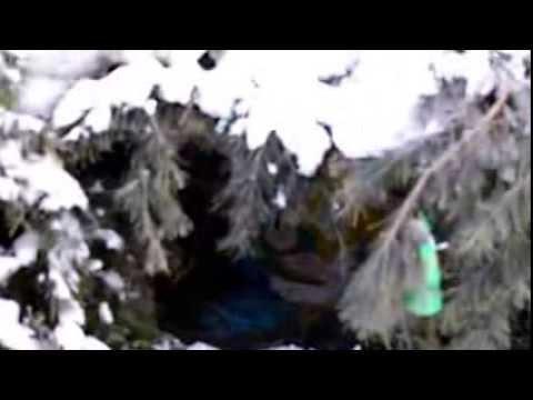 Чусовой спасо-преображенский храм