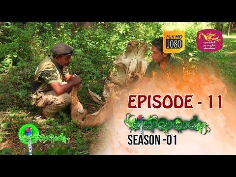 Sobadhara | Season - 01 | Episode 11 | Sobadhara Rupavahini