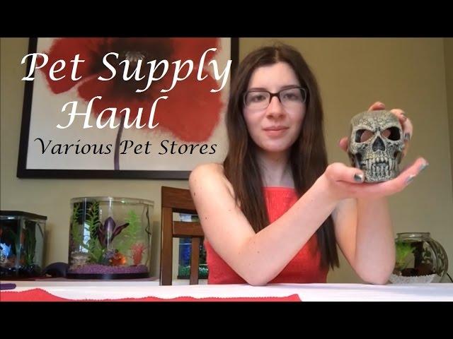 Fish Supply Haul! VARIOUS PET STORES