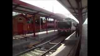 preview picture of video 'Trenes por Guadalajara'