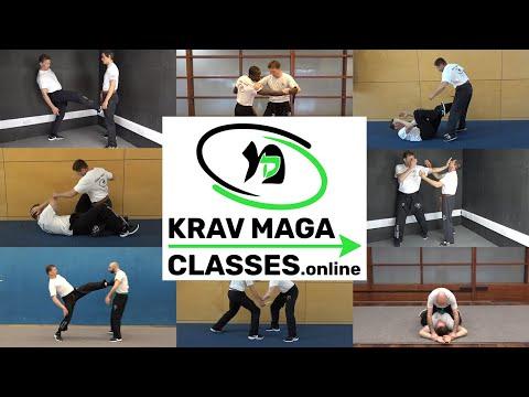 Krav Maga Classes Online   Lesson 1
