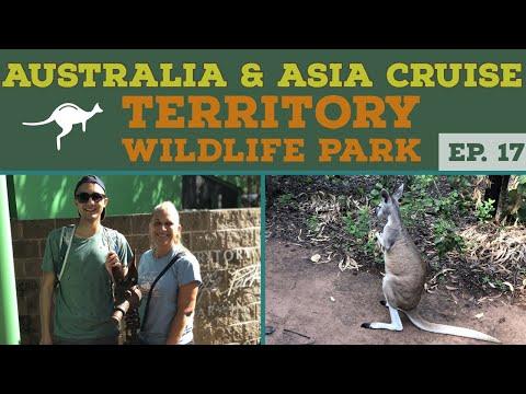 Territory Wildlife Park Darwin Australia l NCL Jewel l Cruise Vlog l Ep. 17